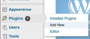 Add A New Plugin Screen
